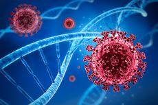 Menristek: Mutasi Virus Corona Berpengaruh pada Efikasi Vaksin