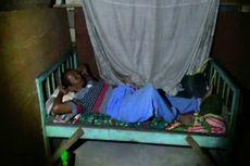 Saeman Rela Tidur di Kandang demi Jaga Sapi Milik Presiden Jokowi