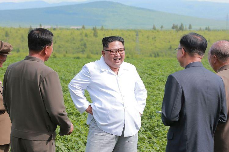 Dalam foto tanpa tanggal yang dirilis media Korea Utara KCNA pada 10 Juli, terlihat Kim Jong Un berdiri dan tertawa saat berkunjung ke ladang kentang di Samjiyon.