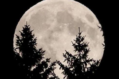 Apa yang Terjadi jika Bulan Hilang dari Orbit Bumi?