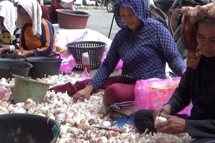 Pedagang di MMTC Pancing memilah bawang putih. Selama sepekan terakhir, harga bawang putih mengalami kenaikan signifikan. Kenaikan harga bawang putih diduga tidak lepas dari merebaknya virus corona.