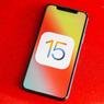 Lakukan Hal Ini Sebelum Update iPhone ke iOS 15