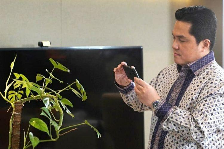 Erick Thohir bersama tanaman hias janda bolong.