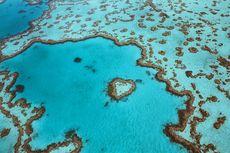 Batu Karang Indah di Australia Bisa Dikunjungi Setelah Tutup Puluhan Tahun