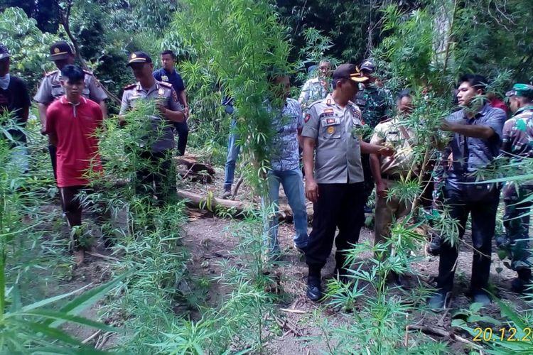 Ladang ganja seluas dua hektare ditemukan pihak kepolisian dikawasan perbukitan Kabupaten Empat Lawang, Sumatera Selatan. Dalam kasus tersebut, dua petani yang diduga menanam ganji tersebut berhasil ditangkap.