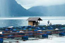 Di Balik Keindahan Danau Maninjau Sumbar, Ada Cerita Legenda Bujang Sambilan jadi Ikan, hingga Misteri Ratusan Ton Ikan Mati