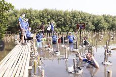 6 Duta Besar dari Uni Eropa Tanam Pohon di Taman Wisata Mangrove Angke