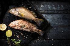 3 Cara Mudah Membersihkan Ikan Kerapu, dari Hilangkan Lendir sampai Cabut Duri