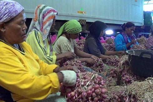 BPS: 74,3 Juta Pekerja Indonesia Berpendidikan Rendah