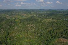Bupati Penajam Paser Utara Bikin Peraturan Mengatur Harga Tanah di Lokasi Ibu Kota Negara