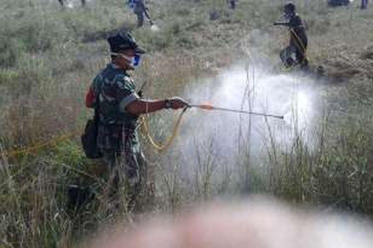 Anggota TNI AD dari Komando Distrik Militer 1601/Sumba Timur, Nusa Tenggara Timur (NTT), sedang melakukan penyemprotan terhadap hama belalang yang menyerang wilayah itu