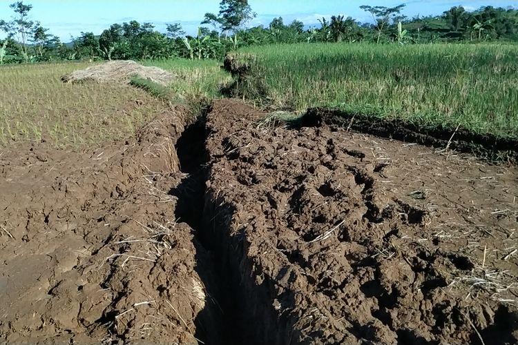 Retakan tanah yang terus membesar dan membelah persawahan akibat bencana tanah bergerak di Kamoung Gunungbatu, Desa Kertaangsana, Nyalindung, Sukabumi, Jawa Barat, Sabtu (4/5/2019).