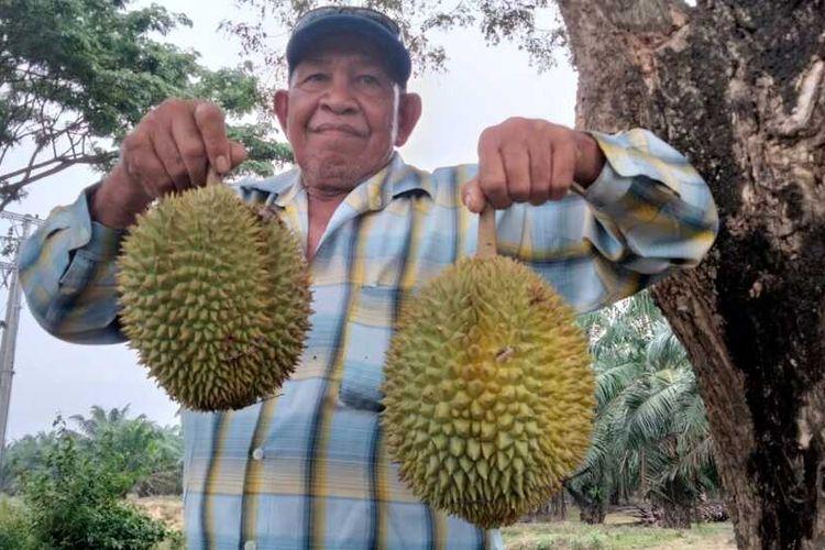 Durian Sukarami di Jalan Lintas, Medan-Banda Aceh, tepatnya di Desa Karang Baru, Kecamatan Karang Baru, Kabupaten Aceh Tamiang
