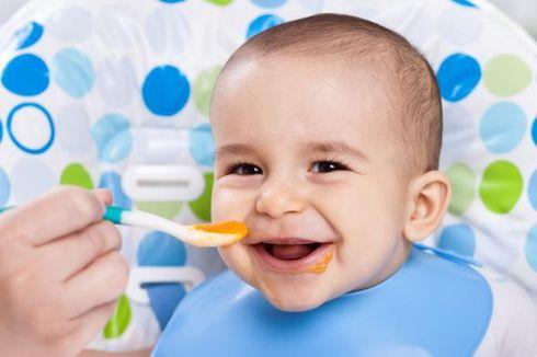 Pedoman Gizi Seimbang untuk Bayi Usia 0-24 Bulan