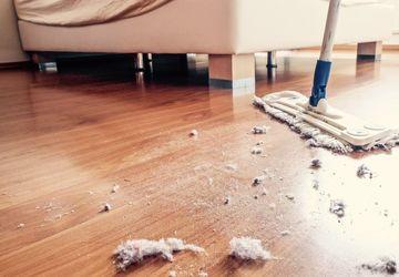 Penyebab Debu Muncul Kembali Setelah Dibersihkan dan Cara Mengatasinya