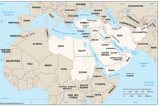 Politik Arab Spring di Timur Tengah (2011)