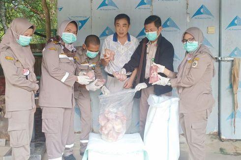 Cegah Dioplos Daging Sapi, Daging Celeng Diekspor ke Vietnam