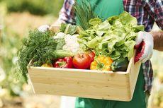 Cara Simpan Buah dan Sayur Stok Lebaran