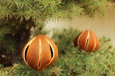 Jeruk Jadi Ornamen Natal, Kenapa Tidak?