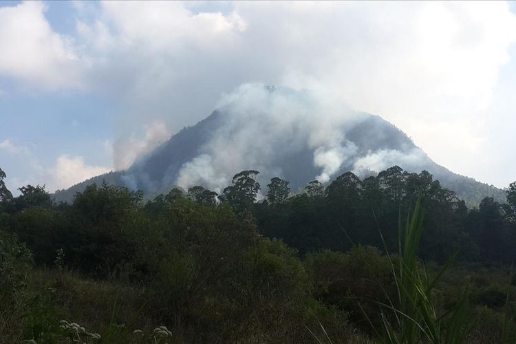 Kepulan asap membumbung akibat kebakaran hutan di Gunung Panderman, Kota Batu, Jawa Timur, Senin (22/7/2019)
