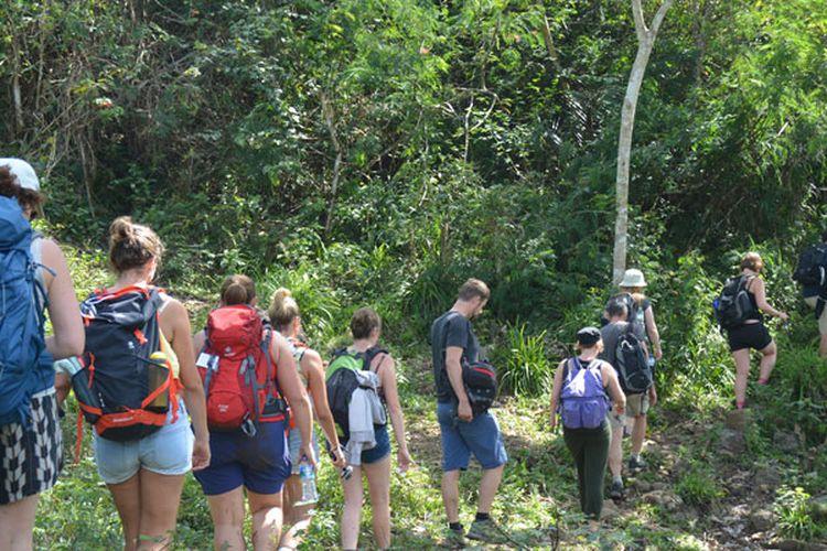 Turis melintasi kawasan hutan Mbeling dengan trekking. Turis sangat terkesan dengan keaslian alam dan hutan di kawasan Mbeling, Kecamatan Borong, Manggarai Timur,Flores, NTT, Senin (14/8/2017).