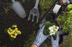 Suburkan Tanah dengan Cara Mudah Ini