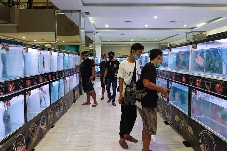 Pameran dan Lomba Ikan Louhan di Mall Sentraland Semarang.