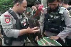 Polisi Tangkap Pelaku Sabung Ayam di Jakarta