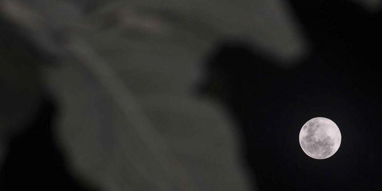 Fenomena alam Supermoon terlihat dari Palu, Sulawesi Tengah, Selasa (19/2/2019). Badan Meteorologi, Klimatologi, dan Geofisika (BMKG) melansir fenomena Supermoon kali ini atau disebut juga Super Snow Moon terjadi saat bulan berada pada titik perige terdekat yakni 363.300 km dari bumi sehingga bulan terlihat 14 persen lebih besar dan 30 persen lebih terang dari bulan purnama.