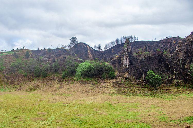 Batu vertikal di kawasan puncak Gunung Pakuwaja yang konon merupakan Paku Pulau Jawa.