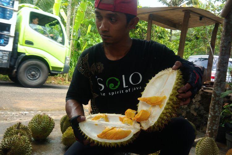 Andriana memperlihatkan Durian Kencono Rukmi jenis Lokal asli Gunungkidul