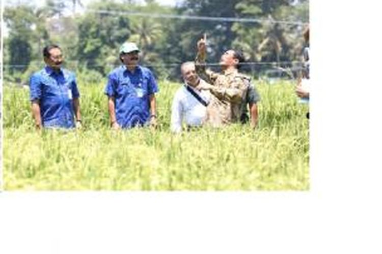 Menteri Pertanian Amran Sulaiman saat berada di Kab. Badung Bali