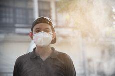 Kabut Asap dan Dampaknya Bagi Kesehatan