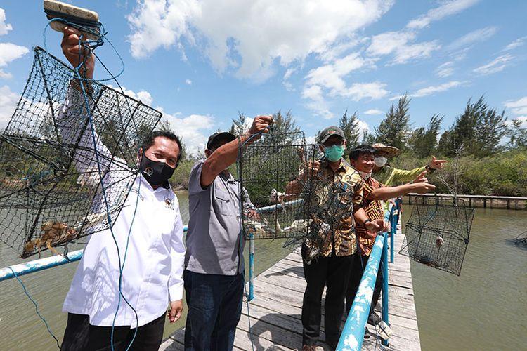 Sekretaris Kementerian PPN/Sekretaris Utama Bappenas Himawan Hariyoga melihat penangkaran kepiting dan udang di Geosite Juru Seberang, Belitung Mangrove Park, Sabtu (5/9/2020).