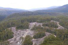 UNESCO Tolak Permintaan Australia Cabut Status Warisan Dunia Tasmania