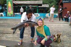 6 Aktivitas Wisata di Cibulan Selain Berenang dengan Ikan Dewa