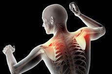 Tulang Belikat: Posisi, Fungsi, dan Masalahnya