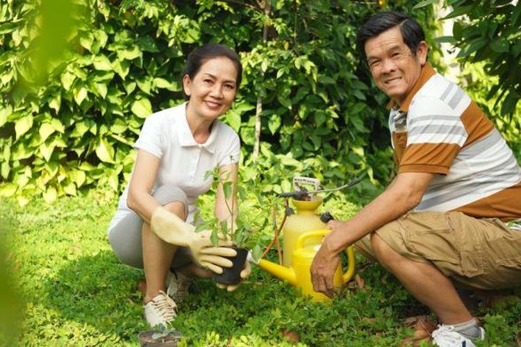 Aktivitas berkebun di pekarangan rumah