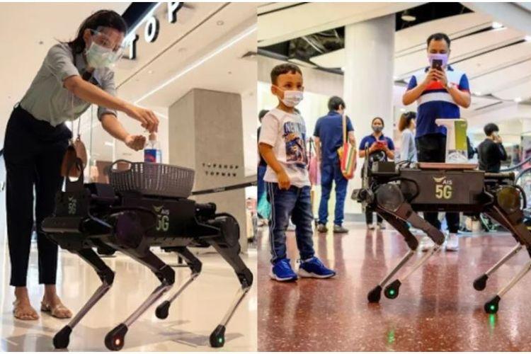 robot anjing pembawa hand sanitizer
