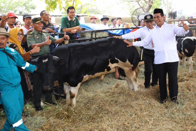 Menteri Pertanian (Mentan) Andi Amran Sulaiman saat menghadiri Kontes Ternak dan Panen Pedet terbesar di Indonesia tahun 2018 di Pasar Induk Puspa Agro, Sidoarjo pada Minggu (28/10/2018)