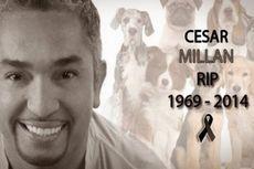 Hoax Kabar Cesar Millan Si Pawang Anjing Meninggal Dunia