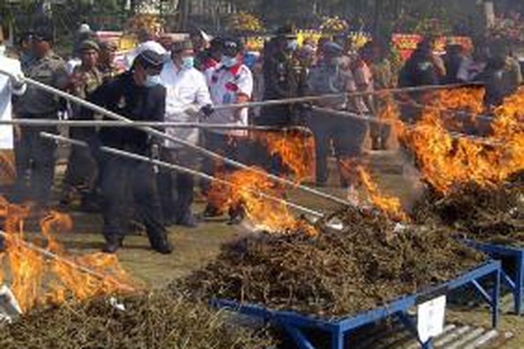 Pemusnahan ganja kering siap edar seberat 590 kilogram dengan nilai Rp 1. 475.000.000 yang merupakan hasil penangkapan Badan Narkotika Nasional Provinsi (BNNP) Jabar di Lapangan Gasibu, Bandung, Jawa Barat, Selasa (19/8/2014). Pemusnahan dipimpin oleh Gubernur Jawa Barat Ahmad Heryawan dan Ketua BNNP Jabar Brigjend Anang Pratanto.