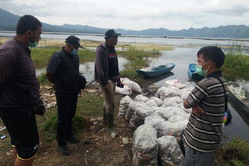 Puluhan Ton Ikan Nila di Danau Batur Mati akibat Semburan Belerang, Kerugian Ratusan Juta Rupiah