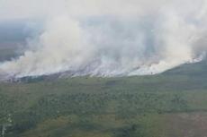 Memahami Cara Kerja Hujan Buatan Memadamkan Api Kebakaran Hutan