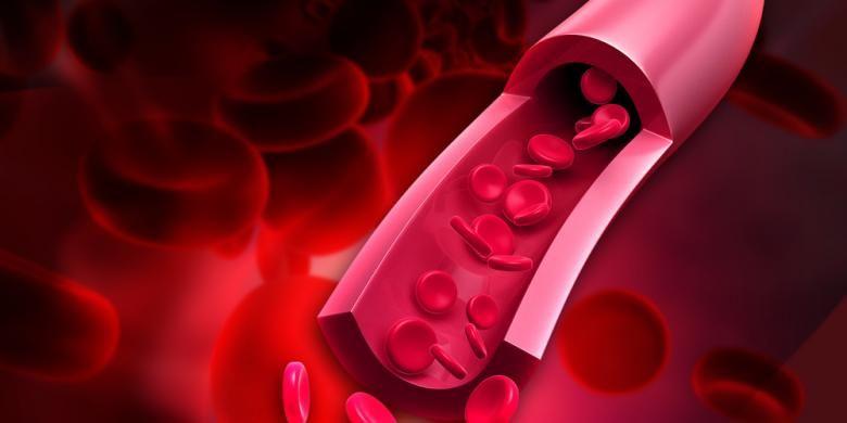 Ilustrasi sel darah