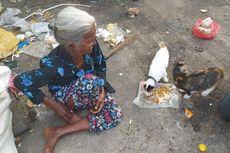 Kisah Mbah Sriah 30 Tahun Hidup di Gubuk Terpal, Berbagi Makan dengan Kucing-kucing