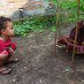 Bunga Bangkai Tumbuh di Pekarangan Rumah Warga Lamongan, BKSDA: Fenomena Langka