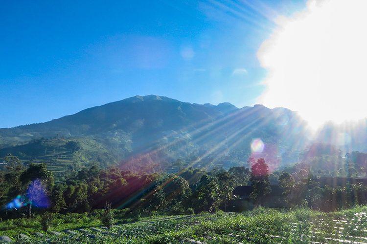 Gunung Merbabu.
