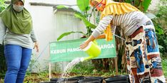 Jaga Stabilitas Pangan di Tengah Pandemi, Dompet Dhuafa Hadirkan Kebun Pangan Keluarga