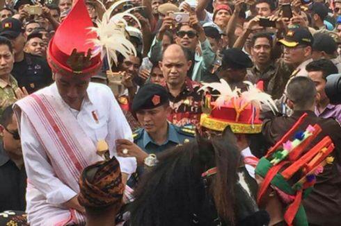Kunjungi Sumba Barat Daya, Jokowi Sebut Ingin Lihat Kuda Sandalwood